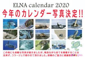 ELNAカレンダー2020