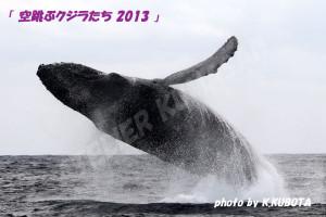 ザトウクジラのブリーチ